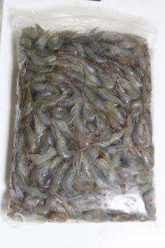 中国産食品用カワエビ3/5サイズパッケージ画像